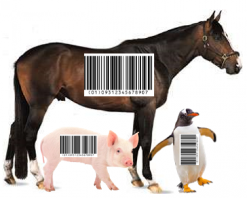 Divinely Barcoded Species? Has God encoded evidence of creation in every creature?